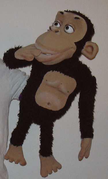 Chimpanzé ,  marionnette poupée